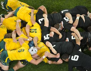 Bledisloe Cup Australia v New Zealand
